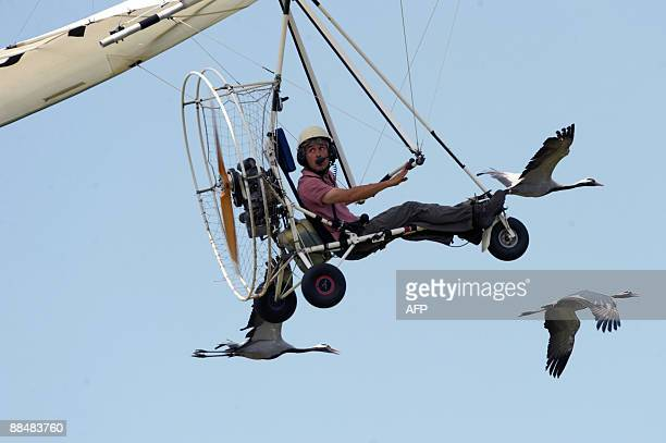 French microlight pilot Christian Moullec is accompanied by a flock of cranes during the WAG 2009 in Turin on June 14 2009 AFP PHOTO / GIUSEPPE CACACE