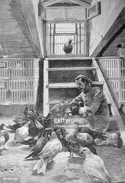 French military pigeon loft There were ten such lofts in Paris each sending and receiving messages from different directions Engraving Paris 1892