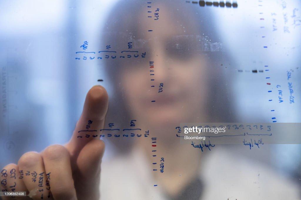 Coronavirus Research Work at The Pasteur Institute : News Photo