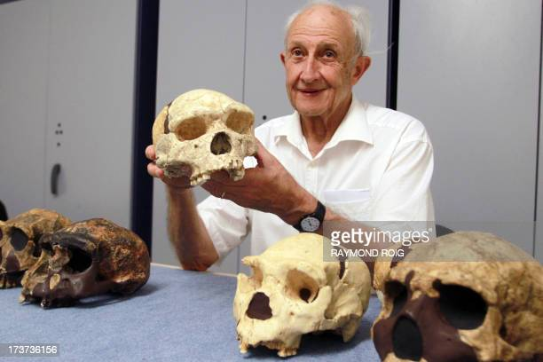 French paleontologist Henri De Lumley shows a skull uncovered in 1971 at the prehistoric site of Caune de l'Arago in Tautavel on July 16 2013 Forty...