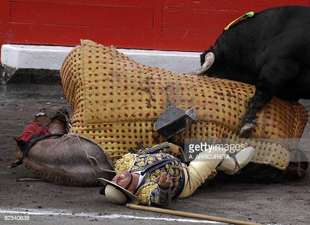 French picador Jacques Monnier falls after being knocked down by a Fuente Ymbro fighting bull during the seventh corrida of the Aste Nagusia...