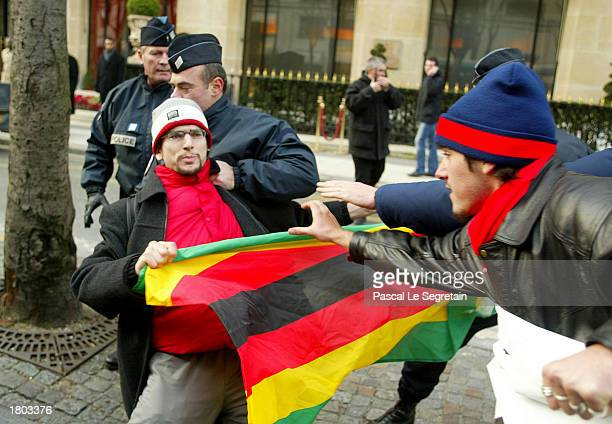 French Policemen grab a protester against the Zimbabwean President Robert Mugabe's visit to France in front of the Plaza Athenee Hotel February 19...