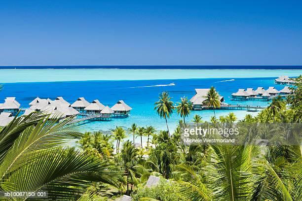french polynesia, beach resorts in bora bora - polinesia francesa fotografías e imágenes de stock