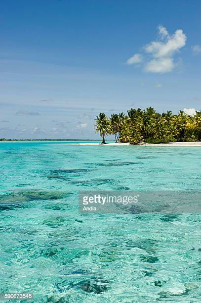 French Polynesia Bora Bora island in the Society Islands exposed to the wind Fine sand beach plam trees coconut trees and island Atoll Pacific Ocean...