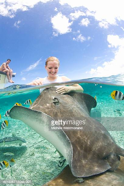 french polynesia, bora bora, woman in sea watching tropical fishes, man sitting in background - french polynesia stock pictures, royalty-free photos & images