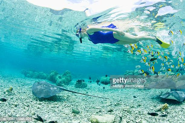 French Polynesia, Bora Bora, Woman snorkelling in sea, side view