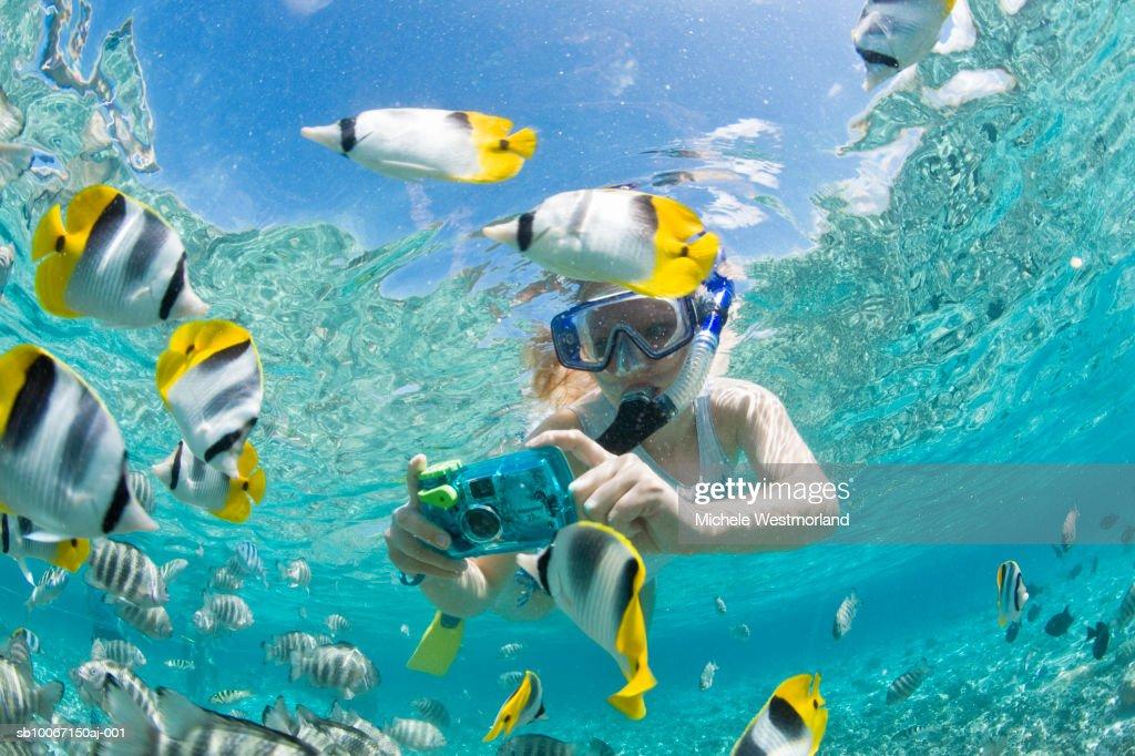 French polynesia bora bora woman taking underwater for Bora bora fish