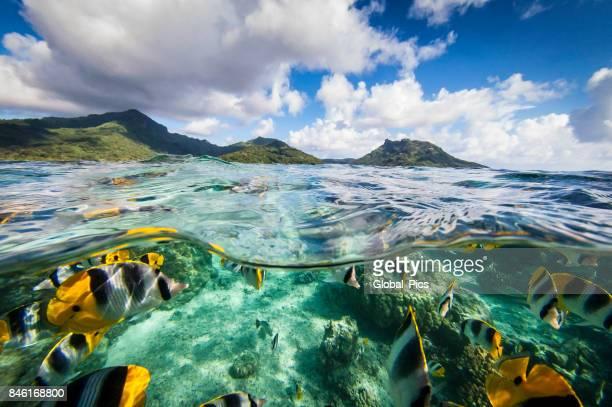 Französisch-Polynesien - Südpazifik
