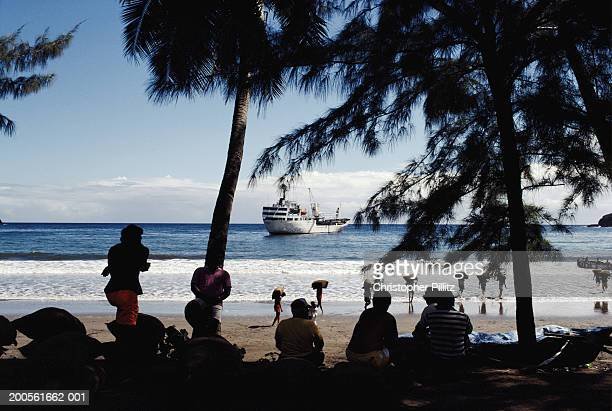 French Polynesia, view of cargo ship from beach with palm trees.