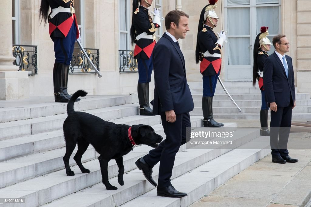 French President Emmanuel Macron Meets Heads Of States of Germany, Spain, Italy, Tchad, Libya And Niger At Elysee Palace : ニュース写真