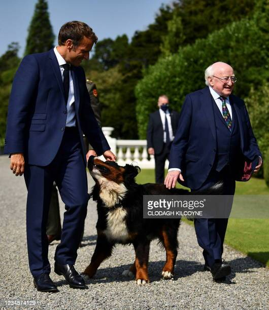 French President Emmanuel Macron pets one of the dogs of Ireland's President Michael D. Higgins as they meet at Aras an Uachtarain, the official...