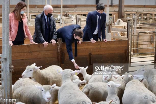 "French President Emmanuel Macron visits ""La Ferme d'Etaules"" farm with with French Agriculture Minister Julien Denormandie and local Senator Francois..."