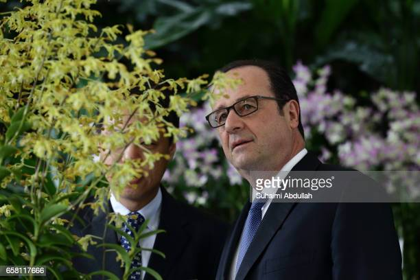 French President Francois Hollande looks at the orchid 'Dendrobium Francois Hollande' named after him during an orchid naming ceremony at the...