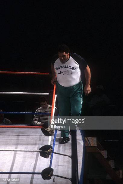 French professional wrestler and actor Andre the Giant gets ready to step over the rope as a special guest referee for the match between Rowdy Roddy...