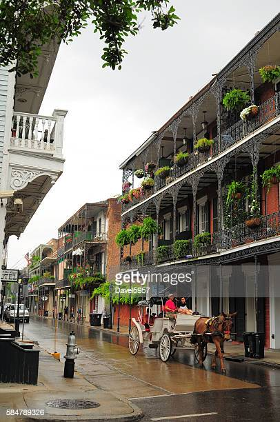 french quarter scene with mule drawn carriage and garden terraces - new orleans french quarter stock photos and pictures