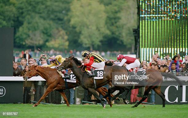 French racehorse Urban Sea wins the Prix de l'Arc de Triomphe at Longchamp Racecourse in Paris October 1993 She is being ridden by jockey Eric...