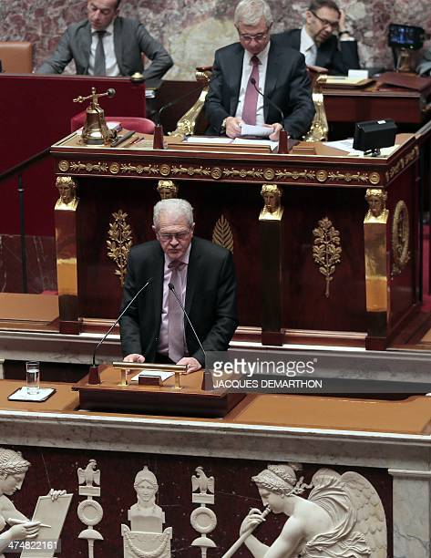 French RRDP member of Parliament Gerard Charasse speaks during a debate on the extention of the Operation Sangaris military deployment in the Central...