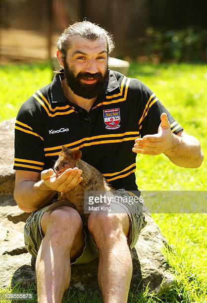 French Rugby player Sebastien Chabal enagages with an Australian native Quokka named 'Autumn' at Taronga Zoo on February 23 2012 in Sydney Australia