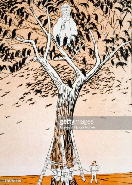 French Satirical Illustration showing Pope Pius IX in a tree being assessed by Aristide Briand of France In 1905 France issued a Law of Separation...