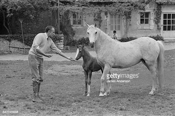 French Secretary of State of Agriculture and author JeanFrancois Deniau and horses at home near Blois