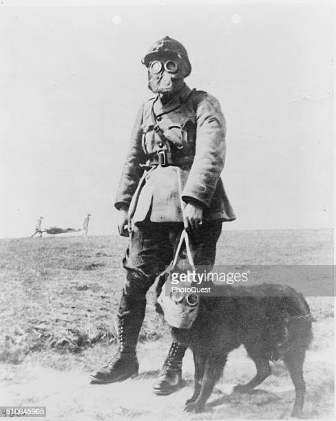 A French sergeant and a dog both wearing gas masks on their way to the front line in World War I France circa 1915