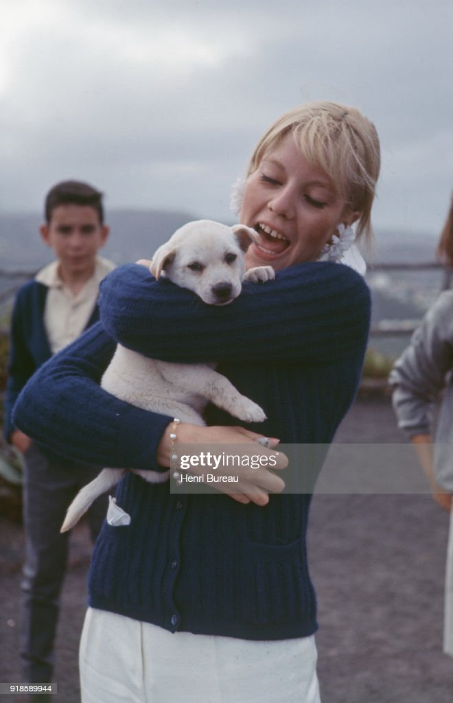 French singer Sylvie Vartan playing with a puppy during her vacation in the Canary Islands with the french singer Johnny Hallyday.
