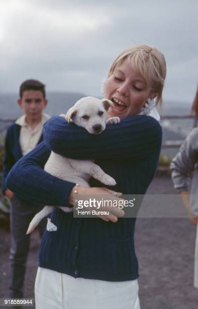 French singer Sylvie Vartan playing with a puppy during her vacation in the Canary Islands with the french singer Johnny Hallyday