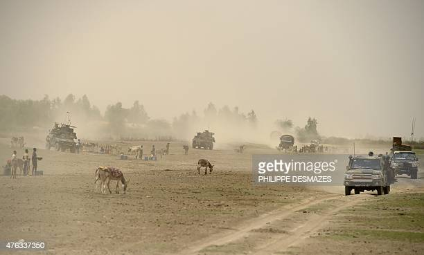 French soldiers of the 93rd French Mountain Artillery Regiment and FAMA ride through cattle on June 4 near M'Gouna in the Timbuktu region northern...