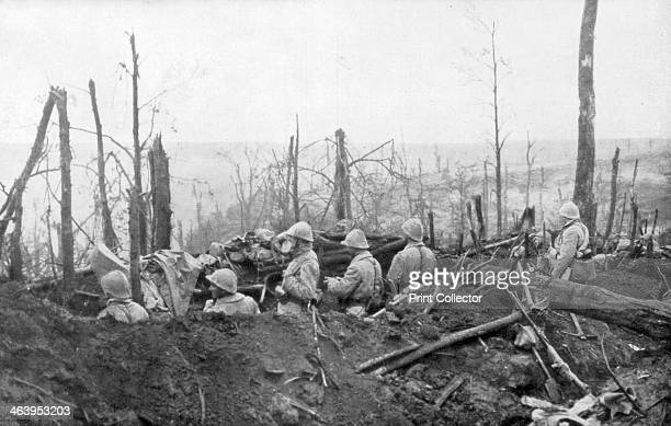French soldiers overlooking German positions Battle of Malmaison 1917 Fought between 23 October and 1 November 1917 Malmaison was a successful French...