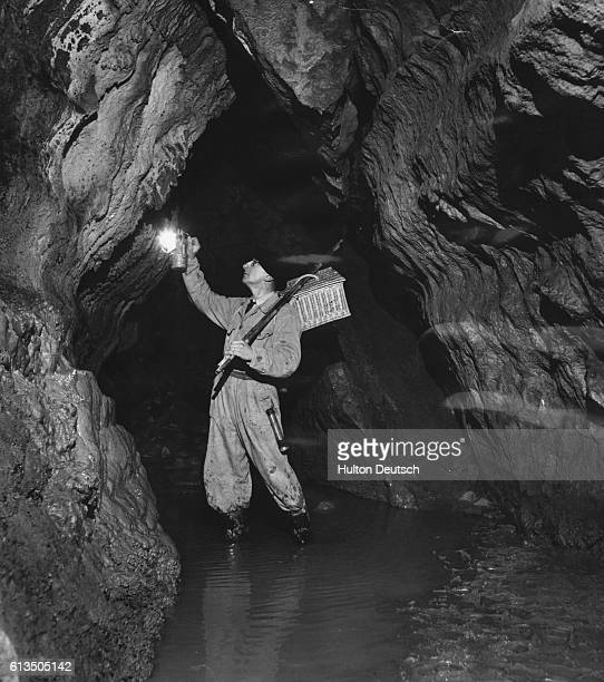 French speleologist M. Norbet Casteret searches for bats in a cave near Labastide-Murat, France.   Location: Near Labastide-Murat, France.