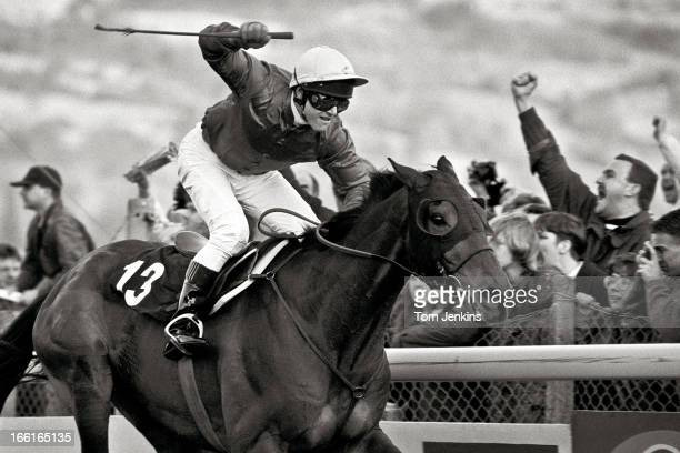 French trained horse The Fellow ridden by the Polish jockey Adam Kondrat passes the winning post first to claim victory in the Gold Cup steeplechase...