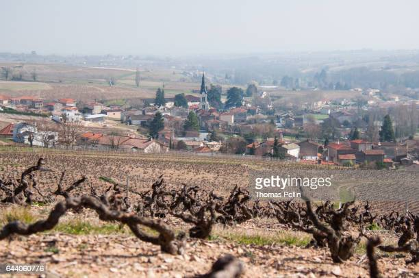 French village in the Beaujolais vineyard