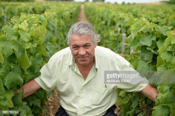 French winemaker Dominique LeandreChevalier poses in his wineyard on July 20 2016 in Anglade southwestern France Dominique LeandreChevalier a rebel...