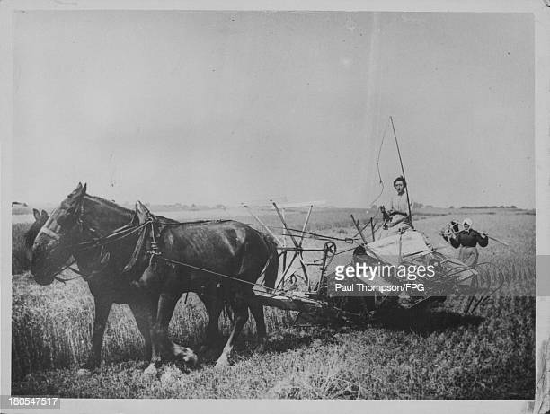French women carrying out agricultural work in the fields in the absence of men during World War One France circa 19141918