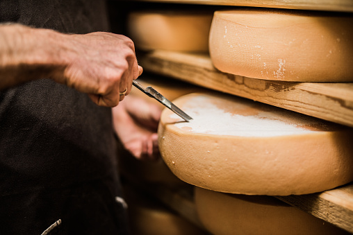 Frenchman taking a sample of premium quality cheese 847814544
