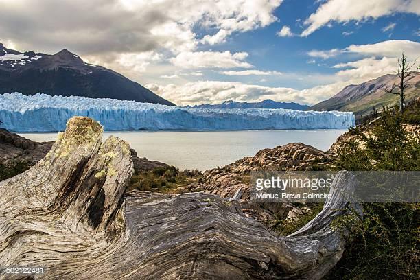 Frente al Perito Moreno