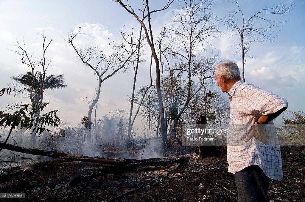 Beazil - Environment - Amazon Deforestation : News Photo
