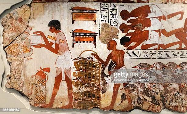 Fresco from the tomb of Nebamun Fragment of a polychrome tombpainting showing mass of geese with their farmers from the presentation of the geese...