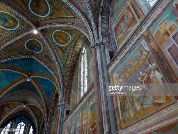 frescoes by giotto and other famous artists in the saint francis basilica, assisi, italy - affresco foto e immagini stock