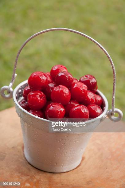Fresh acerola fruits