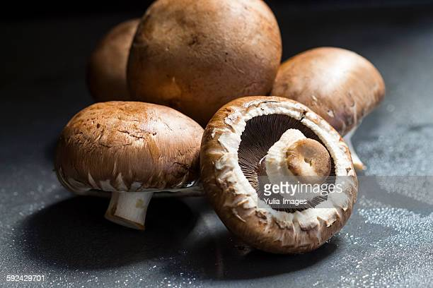 Fresh Agaricus bisporus mushrooms