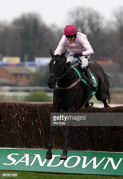 Fresh Air And Fun ridden by Tony McCoy clears the last to win the Paddypowercom Handicap Chase run at Sandown Park Racecourse on March 7 2009 in...