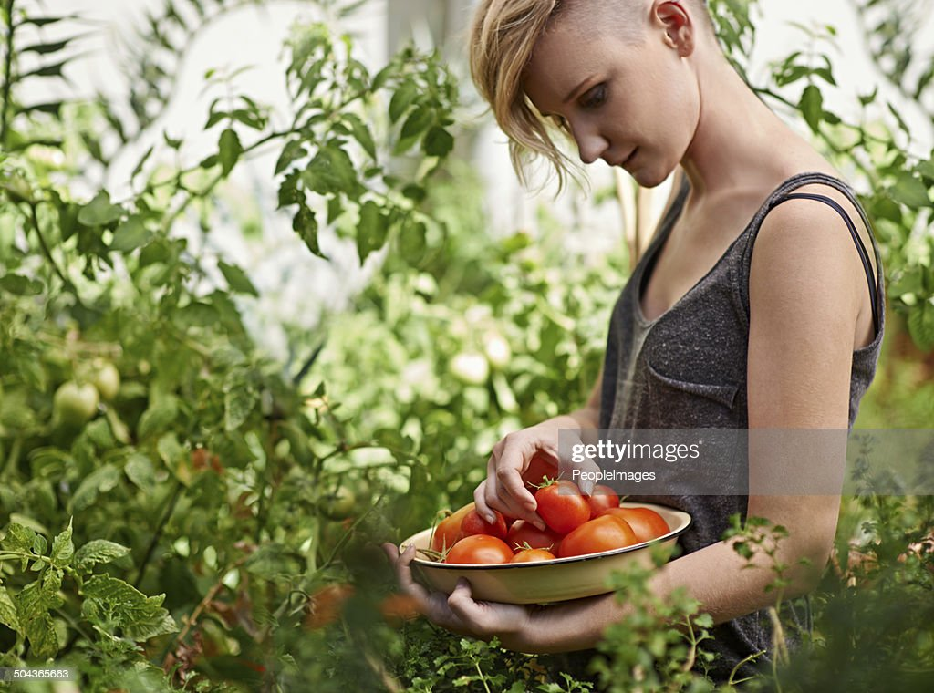 Fresh and delicious : Stock Photo