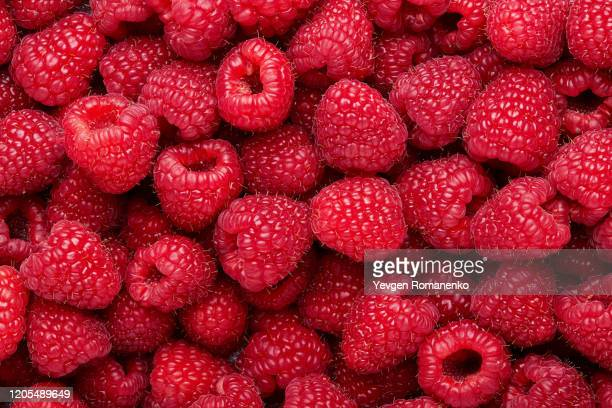 fresh and sweet raspberries background - berry stock pictures, royalty-free photos & images