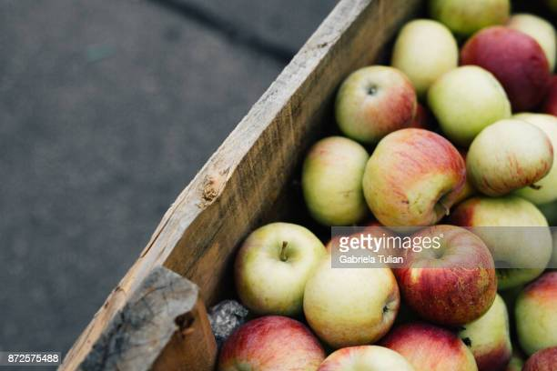 Fresh apples in crates at farmers market