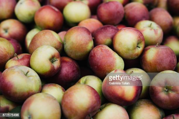 fresh apples in crates at farmers market - image stock pictures, royalty-free photos & images