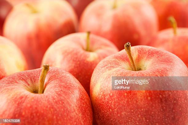 fresh apples - royal gala apple stock photos and pictures