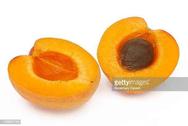 Fresh apricot cut to reveal the stone within.