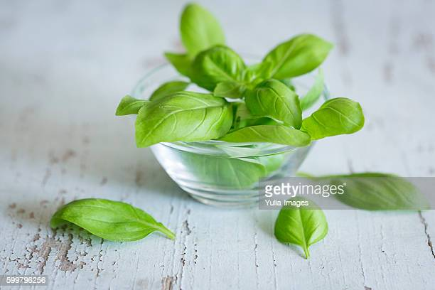 fresh basil leaves on wood - basil stock pictures, royalty-free photos & images