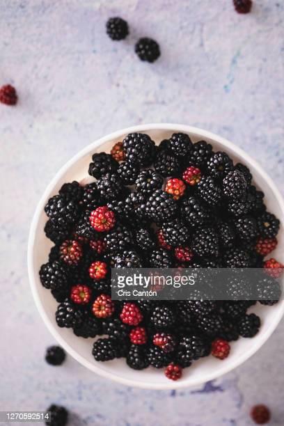fresh berries on bowl - cris cantón photography fotografías e imágenes de stock